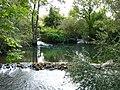 Weir on the River Avon - geograph.org.uk - 1012688.jpg