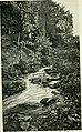 Whittier-land; a handbook of North Essex (1904) (14597558347).jpg