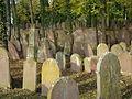 Wiesloch-Jüdischer-Friedhof-2012-63.JPG