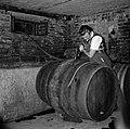 Wijnvat wordt met most gevuld, Bestanddeelnr 254-4218.jpg