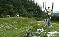Wild Alpener Salzatal, 2012, 050.JPG