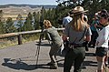 Wildlife viewing in Hayden Valley (8381920470).jpg