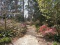 Windrush Gardens - panoramio (1).jpg