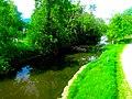 Wingra Creek - panoramio (1).jpg