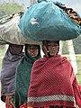 Women Bearing Loads - Banaras Hindu University - Varanasi - Uttar Pradesh - India (12519264493).jpg