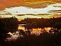 WooLaRa Nature Reserve - panoramio.jpg