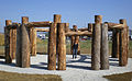 Woodhenge-TanyaPreminger sm.jpg