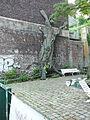 Wuppertal Luisenstr 0097.JPG