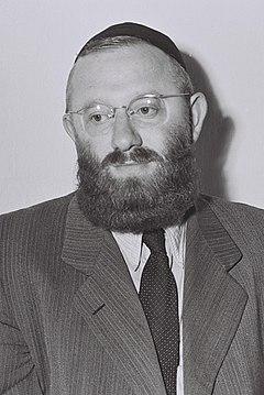 Yehuda Avramovitz.jpeg