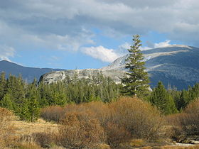 Yosemite-tuolumne meadows 2.jpeg