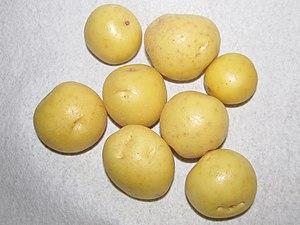 Yukon Gold Creamers