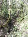 Zimmerbach Quellbach Weidenbach 2.JPG