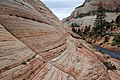Zion - na skále Checkerboard Mesa - panoramio.jpg