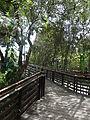(Jardín Botánico de Quito) pic bb09.JPG