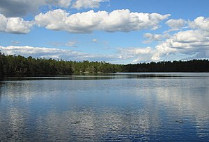 Årsjön, Tyresta national park, 2007-07-20, view northeast from western shore.jpeg