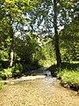 Čutkov potok - panoramio.jpg