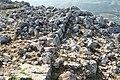 Τμήμα τείχους στο αρχαίο κάστρο της Στέρνας - panoramio.jpg