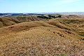 Вид с Козьих гор в юго-восточном направлении - panoramio.jpg