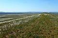 Вид с горы Даминтау в северо-западномном направлении. По центру - гора Верблюжка - panoramio.jpg