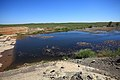 Водосброс Кумакского водохранилища - panoramio (1).jpg