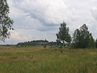 District in Pskov Oblast, Russia