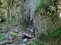 Кањонот на Радика.jpg