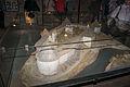 Макет крепости Старая Ладога.jpg