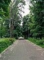 Паркова стежка 2.jpg