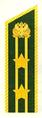 Петлица СНС Рослесхоз-2.png