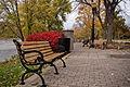 Скамья в парке.jpg