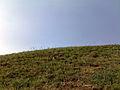 Скелі МоДРу - над скелями.jpg