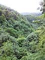 Смоларски водопад 48.jpg