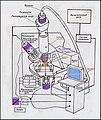 Схема работы Бдижнепольного оптического микроскопа.JPG
