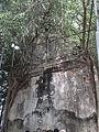 วัดบางกุ้ง Wat Bangkoong.jpg