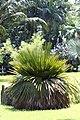 สวนสมเด็จพระนางเจ้าสิริกิติ์ (Queen Sirikit Park ) 033.jpg
