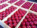 りんご市場にて.jpg