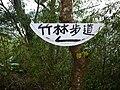 嘉義縣番路鄉 隙頂 竹林步道 - panoramio.jpg