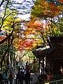 寂光院 (愛知県犬山市継鹿尾杉ノ段) - panoramio (19).jpg