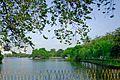 广州东湖公园Scenery in Guangzhou, China - panoramio (3).jpg
