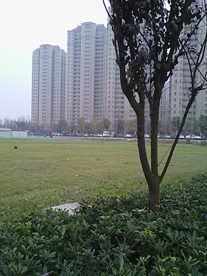 Jiangxin Island - Image: 江心洲新城2