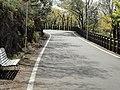 金華山ドライブウェイ - panoramio (2).jpg