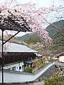 長谷寺 Hase-dera Temple - panoramio.jpg
