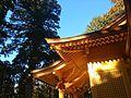 須山浅間神社himai2.jpg