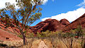 01-valley-of-the-wind-walk-olgas-kata-tjuta-australia.JPG