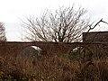 015 Aqüeducte de Can Ferrater (Canyet, Badalona).jpg