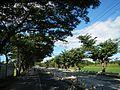 08469jfCagayan Valley Road Maharlika Highway San Ildefonso Rafael Bulacanfvf 10.jpg