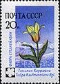 1960 CPA 2494.jpg
