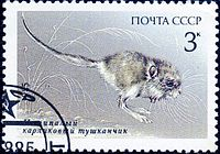 1985 CPA 5659.jpg