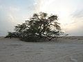2010-03 Tree of Life Bahrain.jpg