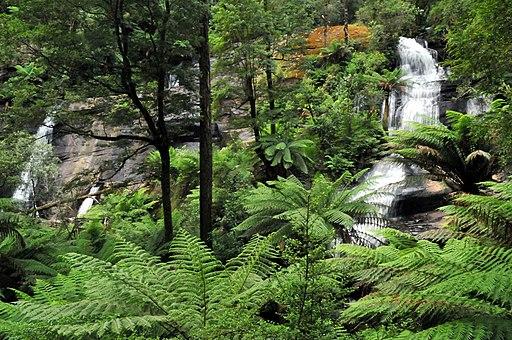 20100102 Triplet Falls - Otway Ranges - Victoria - Australia